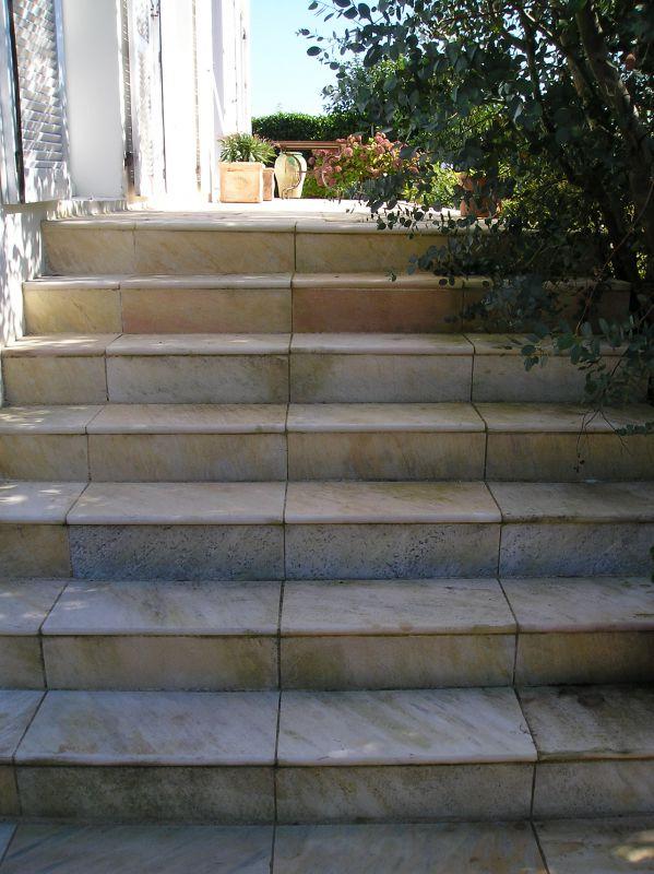 Dallage terrasse bois clot res grillag es pvc for Entretien jardin concarneau